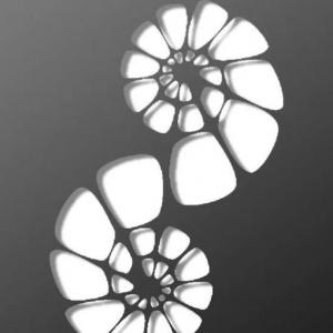 reznye-natyazhnye-potolki-apply-v-minske-foto.jpg-46-300x300 Резные натяжные потолки Apply в Минске